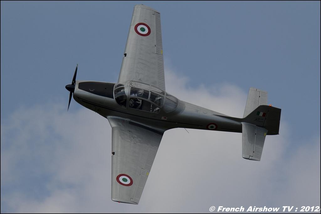 Piaggio P-149 - F-AZZI, Meeting Aerien Roanne 2012