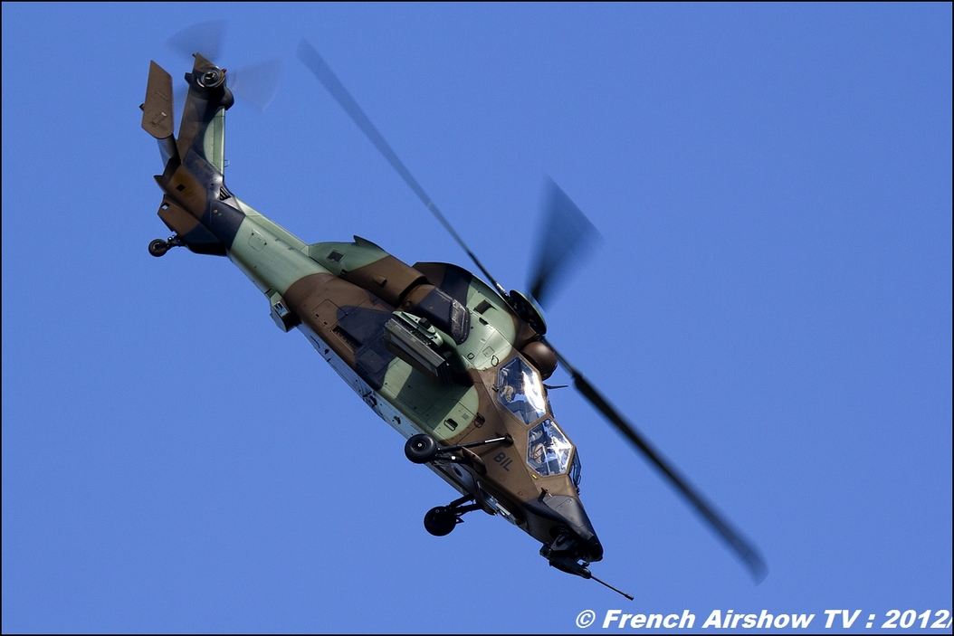 Two Tiger EC-655 Free flight world Master Valence-Chabeuil 2012