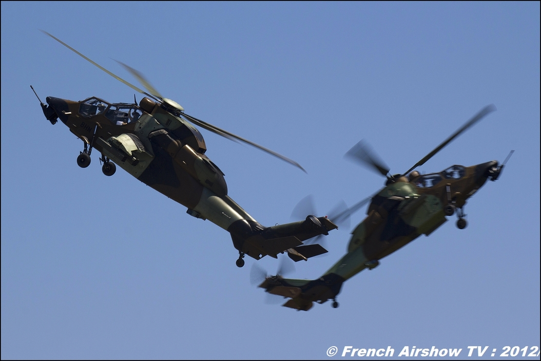 patrouille tigre, Two Tiger EC-655 Free flight world Master Valence-Chabeuil 2012